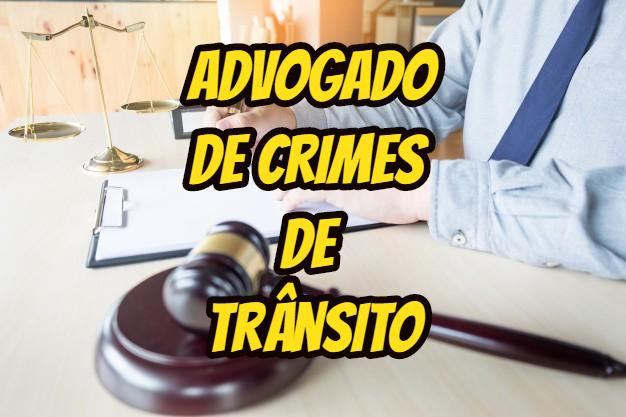 advogado de crimes de trânsito